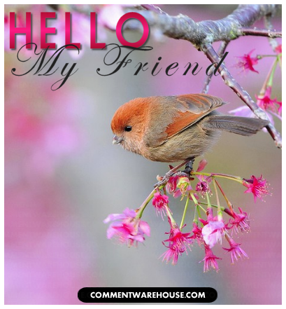 Greeting Hello My Friend