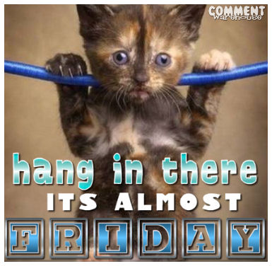 Hang In There Its Almost Friday Kitten