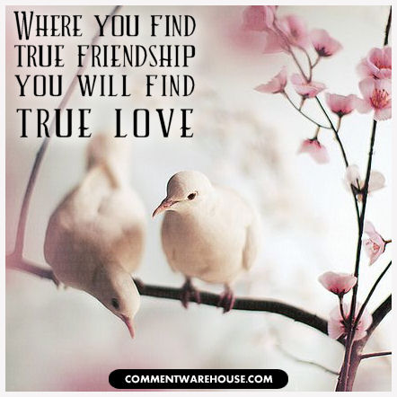 Where you find true friendship you will find true love
