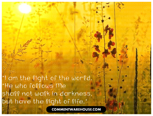 I am the Light of the World. He who follows me shall not walk in darkness but have the light of life | John 8:12