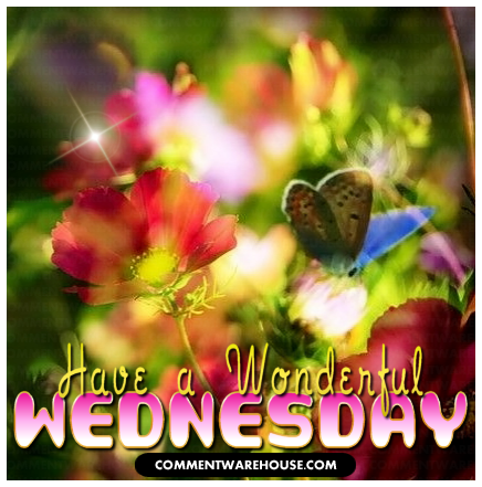 Have a Wonderful Wednesday | Wednesday Graphics