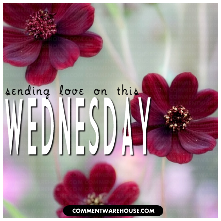 Sending Love on This Wednesday | Wednesday Graphics