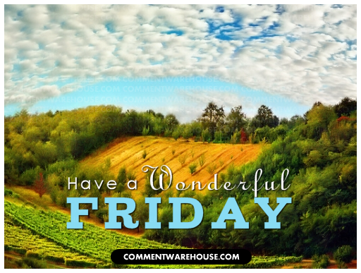 Have A Wonderful Friday Commentwarehouse Say It With A Pic