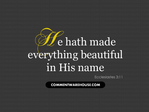 He Hath Made Everything Beautiful in His Name - Ecclesiastes 3:11