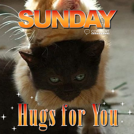 Sunday hugs for you | Sunday Comments & Graphics