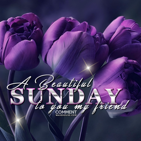 A beautiful Sunday to you my friend | Sunday Comments and Graphics