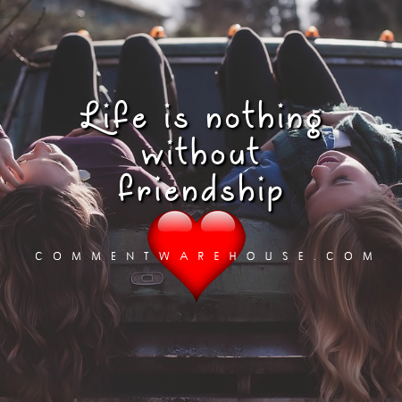 Life is nothing without friendship | Friendship Quote