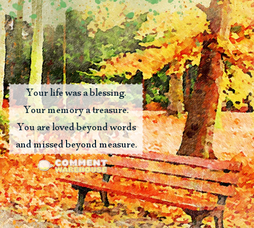Your life was a blessing. Your memory a treasure. You are loved beyond words and missed beyond measure. | Sympathy & Memorial Quotes and Images