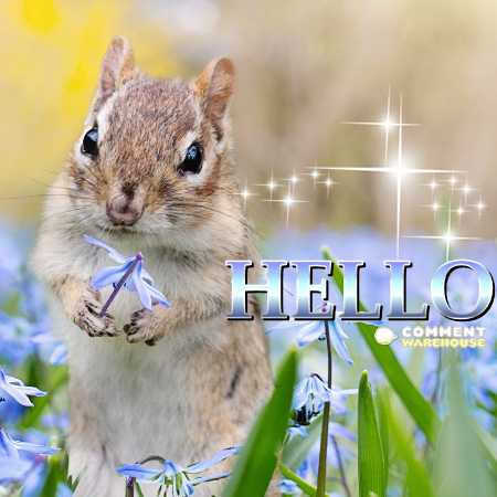 Hello! | Hello Messages, Greetings, Images, Pics, Graphics