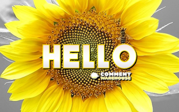 Hello Graphics, Images, Greetings, Messages & Pics