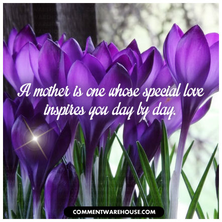 A mother is one whose special love inspires you day by day.